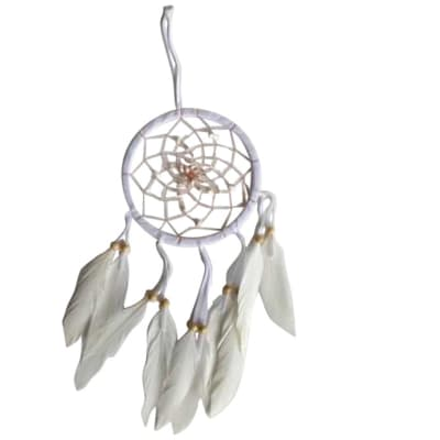Wall Hanging Dreamcatcher  White 16cm  image