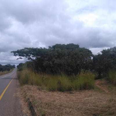 4550 m² commercial vacant land for sale in Sinda (Zambia) image