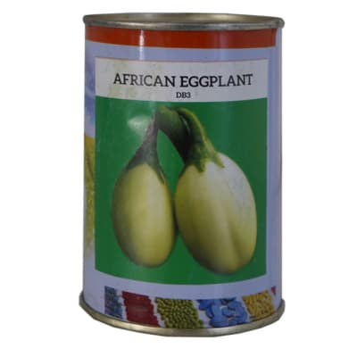 African Eggplant - DB3 image