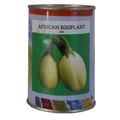African Eggplant - DB3 image