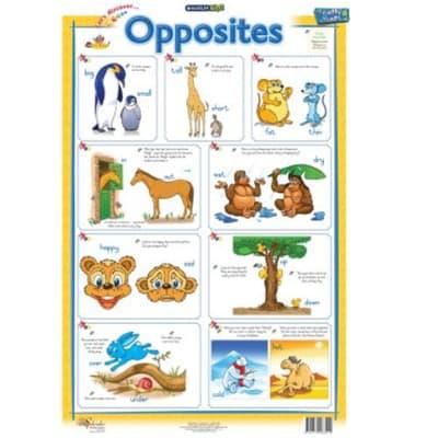 FS Opposites Chart image