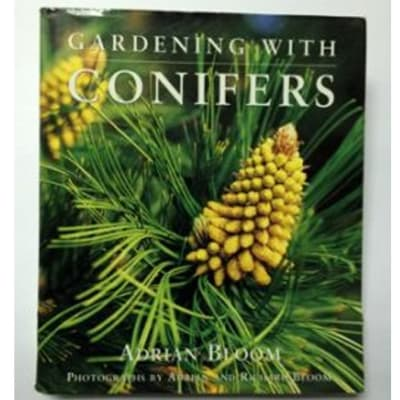 Gardening With Conifers image
