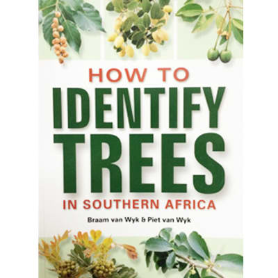 How To Identify Trees In Southern Africa image
