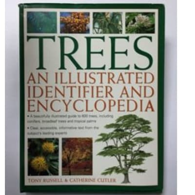 Trees An Illustrated Identifier And Encylopedia image