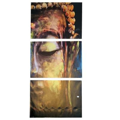 Canvas Painting  Buddha  Split Portrait, Half Face image