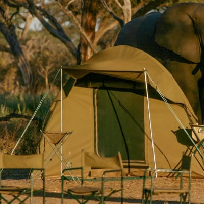 Hwange Camping One Day One Night  image