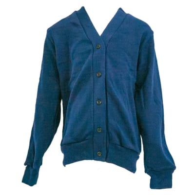 Blue Cardigan image