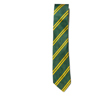 Green with Gold Stripes Neck Tie image