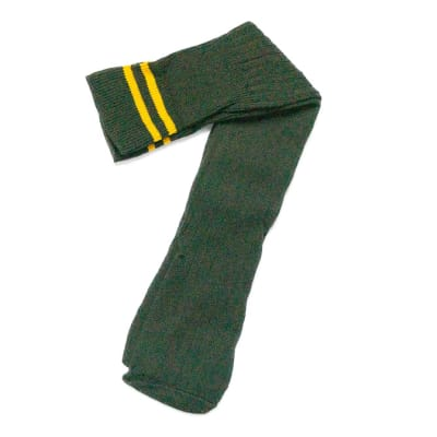 Bush Green with Yellow Stripes Stockings image