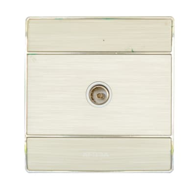 Coaxial Wall Plate - Africab EX-CS Series CS8704 image
