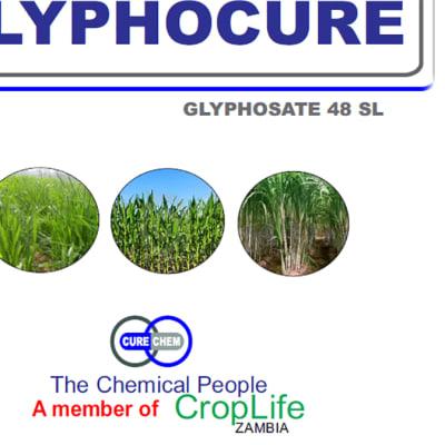 Glyphocure 48% SL Herbicide image
