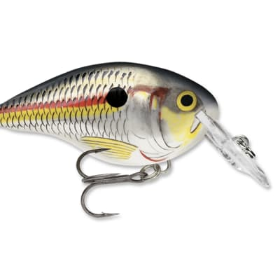 DT® (Dives-To) Series - Shad, Length 2inch, Running Depth 4ft image