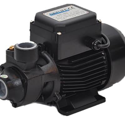 Dayliff DDP60 peripheral pump  image