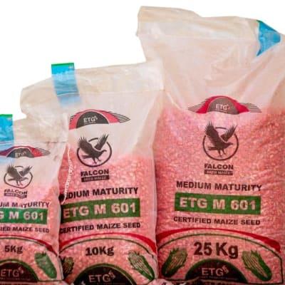 ETG M 601 Medium Maturity Certified Maize Seed  image