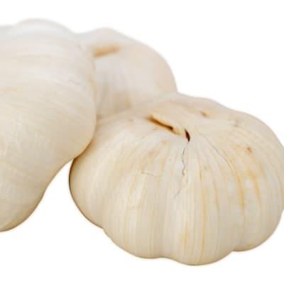 Garlic image