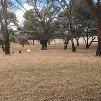 Vacant land for sale in Leopards Hill, Lusaka image