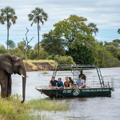 Victoria Falls River Safaris image