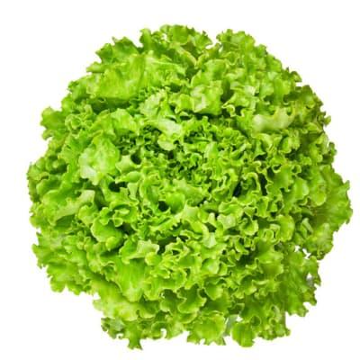 Lettuce Loose Leaf Salad Greens image