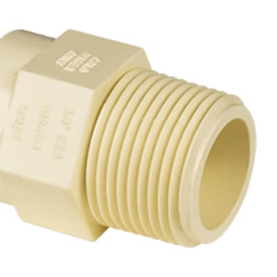 CPVC Male Adapter image