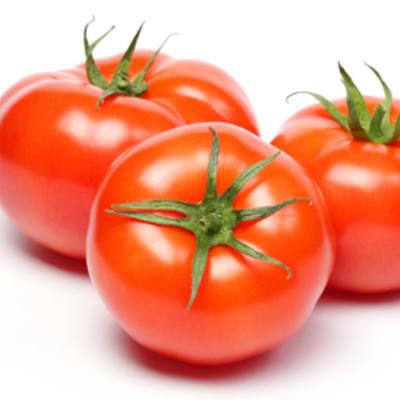 Fruit Vegetables - Medium size tomatoes  image