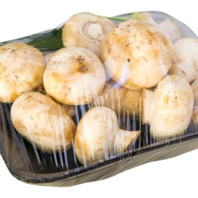 Button Mushroom image