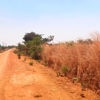 1.3 Acres of Vacant Land For Sale In Ngwerere (Lusaka, Zambia) image