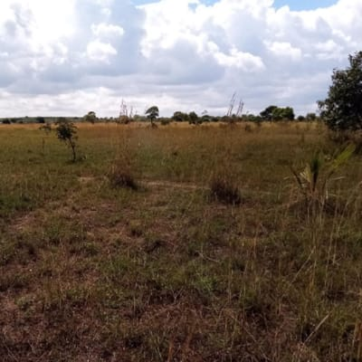 10 hectare farm vacant land for sale in kafue Lusaka  image