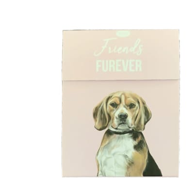 Paws For Thought Magnetic Notepad - Friend Forever image