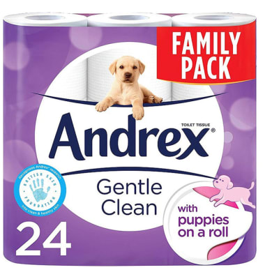 Toilet Tissue -  Andrex Toilet Roll Family Pack 24s image