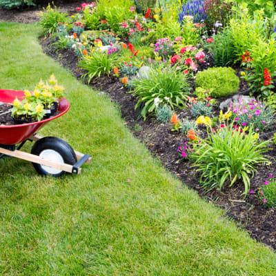 Landscaping/Gardening Maintenance image