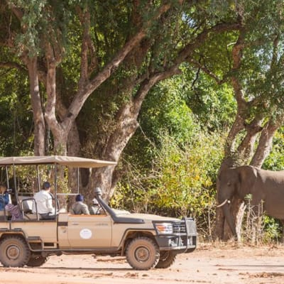Game Drives image