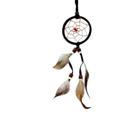 Wall Hanging  Dreamcatcher    Black Double Feather 6cm image