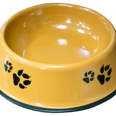 Pet Bowl- Paw Print  image
