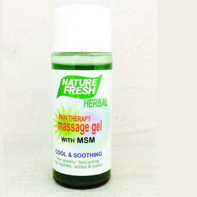Nature Fresh Herbal - Pain Therapy Massage Gel with MSM image