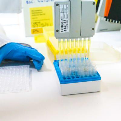 Mycotoxin Testing (Elisa) image
