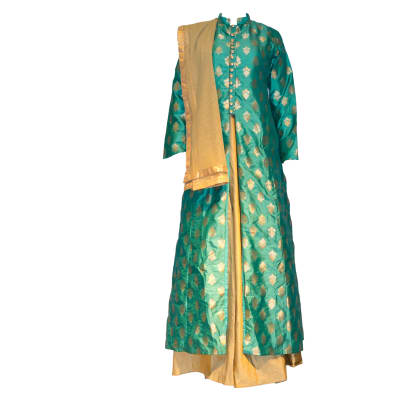 Punjabi Dress Suit green and gold image