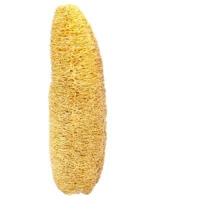 Natural Body Scrubber Loofah Sponge image