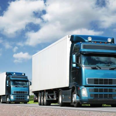 Lechwe Express Logistics image