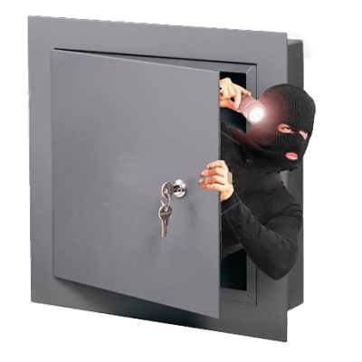 Zamsafes and Alarms image