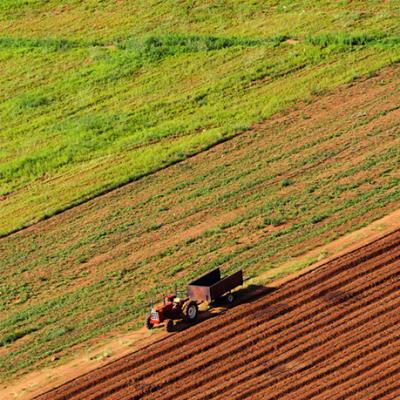 Agricultural Land for Sale  image