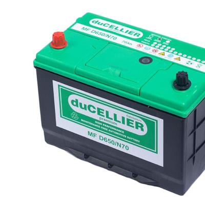 Ducellier Premium Mf-D650n70  image