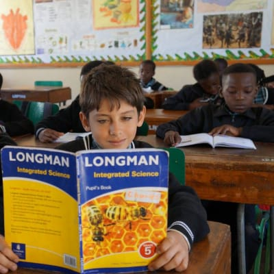 Primary - Penalised, continuing pupils image