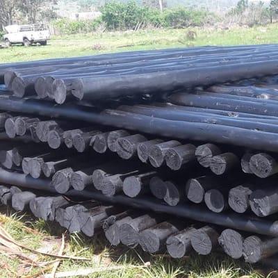 Wooden gum poles image