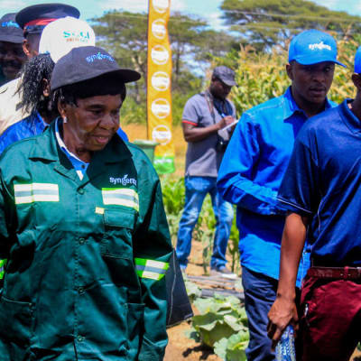 Syngenta Zambia image