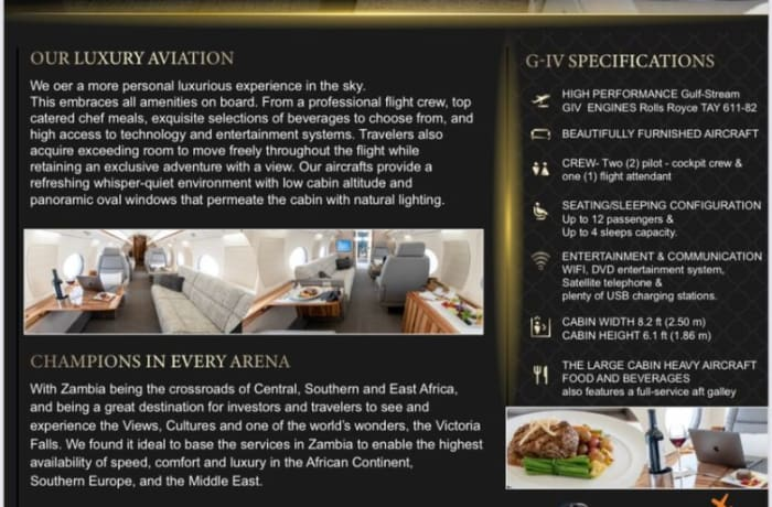 Luxury private jets available for business or leisure trips image