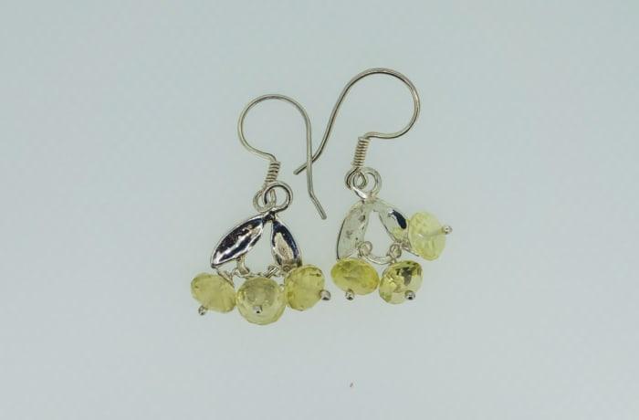 Silver earrings with opal gemstones