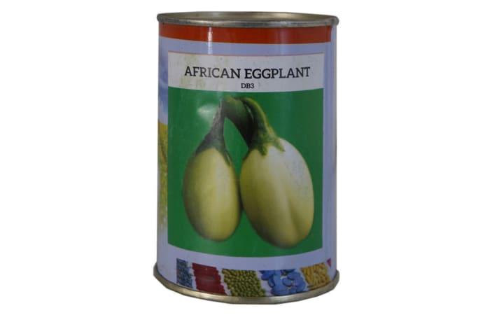 African Eggplant - DB3