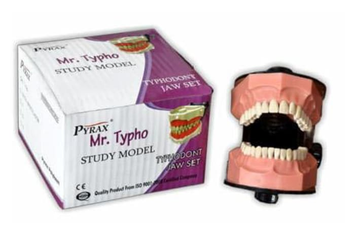 Conservative and Student Materials - Mr Typho Jaw Set