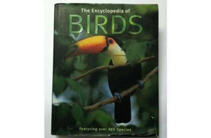 The Encylopedia Of Birds