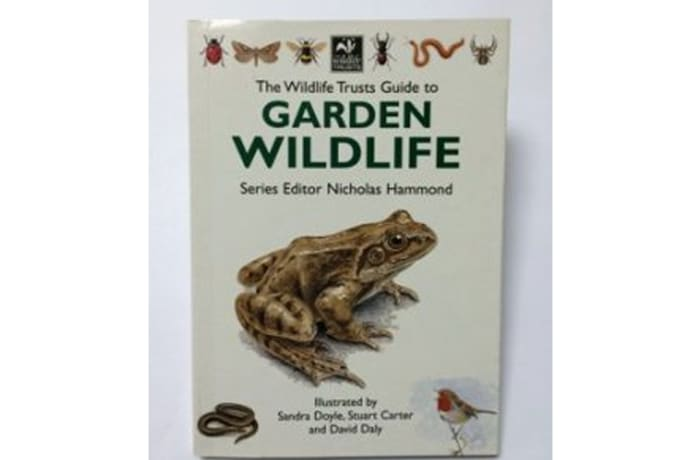 The Wildlife Trusts Guide To Garden Wildlife